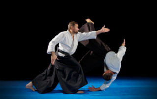aikido japanese martial art